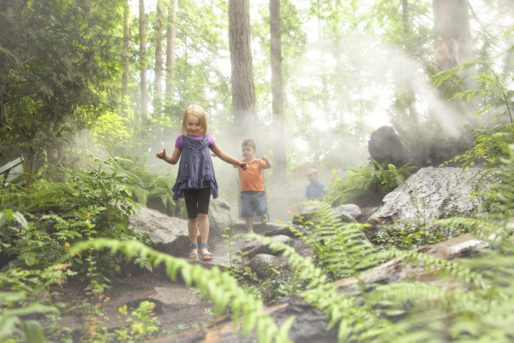 kids running through misty forest