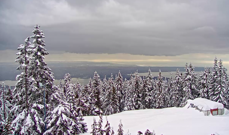 Grouse Mountain Webcam